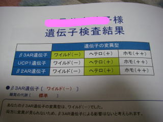 IMGP2140.JPG