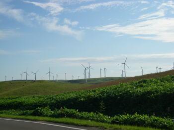 風力発電2.JPG